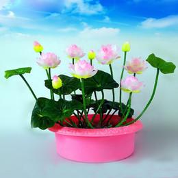 Wholesale Plant Farms - Hot Sale Rare Pink white Bowl Lotus Seeds Balcony Patio Garden Potted Bonsai Plant Seeds Farm Nelumbo Nucifera Seeds 10PCS