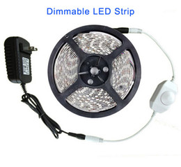Wholesale Ip65 Rope Light - Dimmable Flexible LED Strip Light 5m SMD 3528 Warm white Blue Rope 60leds m 300 LEDs Waterproof IP65 Strips + 2A Power Adapter + LED Dimmer