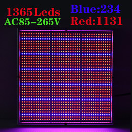 Wholesale Panel Grow - Newest 120W 1131Red:234Blue High Power LED Grow Light for Flowering Plant Greenhouse Hydroponics System led grow panel light AC85-265V