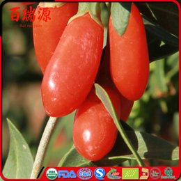 Wholesale Great Value - Top-A ningxia goji berry price lycium barbarum have great value 100% Natural goji selling all grades new wolfberry low tea pesticide