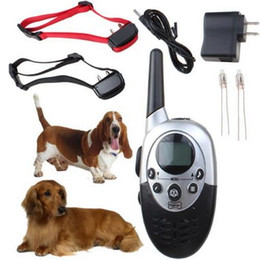 Wholesale Electric Shock Shocking - for 2 Dogs Trainer 1000M Waterproof Rechargeable LCD Remote Pet Dog Training Collar Electric Shock Large Dog Control
