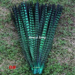 Wholesale Pheasant Feather Rooster - Custom colors Green pheasant tail feathers rooster tail feathers jewelry craft diy feather extention 100pcs 20inch 50cm