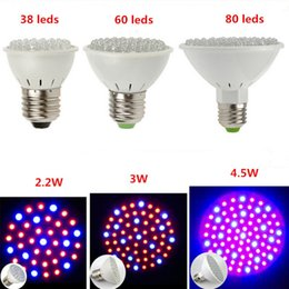 Wholesale Growing Garden Plants - E27 38leds 60leds 80leds 3W Hydroponic Plant Grow Lights 4.5W LED Light Bulb 110V-220V RED and BLUE Garden Greenhouse Aquarium Light