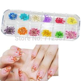 Flores secas uñas al por mayor online-Al por mayor-60 Real Dry Dry Flower Nail Art Tips Decoración DIY