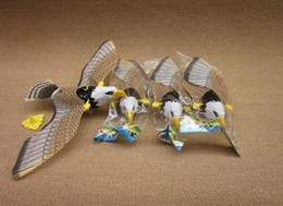 Wholesale Flight Electronics - Wholesale-Hot selling 2014 New Unique Fly Flight Electronic Ceiling Eagle Toys Pets Indoor Playing with Sound WJ0003