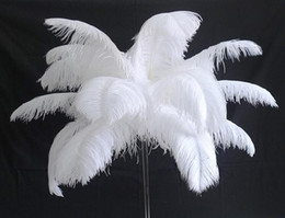 Wholesale Diy Hawaii - 12colours DIY Ostrich Feathers Plume Centerpiece for Wedding Party Table Decoration Wedding Decorations 2016 hot selling 20-25CM