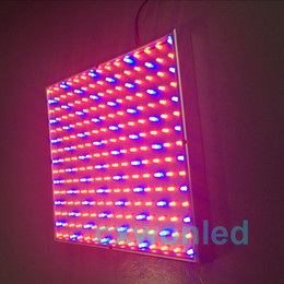 all'ingrosso 220 LED blu + rosso giardino interno pianta idroponica coltiva pannello chiaro 14 Watt + kit di sospensione DHL UPS spedizione gratuita cheap blue light for plants led da luce blu per le piante ha condotto fornitori