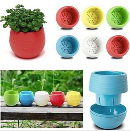 Wholesale Plants Office - Gardening Flower Pots Small Mini Colorful Plastic Nursery Flower Planter Pots Home Office Desktop Garden Deco Garden Pots Gardening Tool