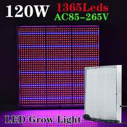 Wholesale Growing Vegetable Plants - 1365pcs SMD 120W 1131Red + 234Blue LED Grow Lights Hydroponics Flower Fruit Vegetable Greenhouse LED Plant Lamp AC 85~265V Grow Panel Light