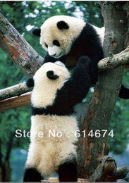 Wholesale Panda Jigsaw - Wholesale-Free shipping! Jigsaw puzzles 1000pcs 730*486mm---china panda -for adults  baby toy