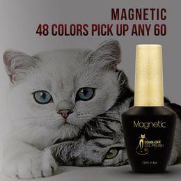 Wholesale Design Polish - 60pcs lot Azure magnetic attraction styling gel 30 Colors Soak Off CAT EYE glue Magnetic NAIL art UV GEL Lacquer Design