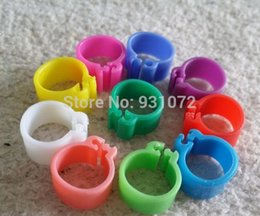 Wholesale Parrot Leg Bands - Free Shipping 5000X Chicken Hen Pigeon Leg Band Poultry Dove Bird Chicks Duck Parrot Clip Rings