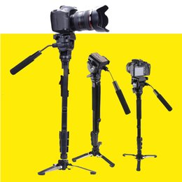Wholesale Pro Fluid Camera - Wholesale-Yunteng C288 Pro Monopod + Fluid Pan Head Ball + DV Unipod Mobile Phone Clip Holder For Canon Nikon DSLR Camera VCT-288