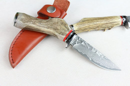 Wholesale Knives Limited Edition - Limited Edition Damascus Fix blade hunting knife 57HRC Antler handle Survial straight knife with leather sheath Cool knives