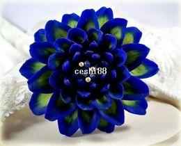 Wholesale Flower Dahlias - Heirloom 300 Seeds Dahlia Dinnerplate Dinner Plate Lilac Time Flower Garden Seeds B2051
