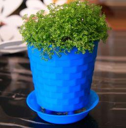 Wholesale Garden Table Plastic - Bonsai Planters Latest Breathable Plastic Table Mini Succulents Plant Pots with Plate Gardening Vase Round Flower Pot Colorful