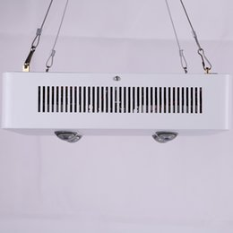 Wholesale Super Bright Led Grow Lights - 150w Super Bright LED Grow Light COB LED with Secondary condensing Lense for Tissue Culture Plant Grow Lights for Indoor Lighting