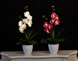 Wholesale Led Lights Flower Pot - Free Shipping Led Blossom Orchid Flower Light 7pcs Warmled With 2 Aa Battery Pot Blossom Orchid Flowers With Buds Silk Home Decoration