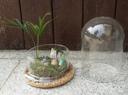 Wholesale Large Green Vases - Air Plant Indoor vase Large Terrarium  Miniature Landscape Vase for Wedding Decor,Home Decor,Gifts For Friends