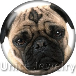 Wholesale Dog Buttons - AD1301147 12 18 20mm Snap On Charms for Bracelet Necklace Hot Sale DIY Findings Glass Snap Buttons Jewelry Dog Design noosa