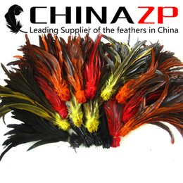 Wholesale Long Rooster Tail Feathers - CHINAZP Crafts Factory Wholesale Length 30~35cm(12~14inch) 500pcs  lot Top Quality Part Dyed Mixed Color Long Rooster Tail Feathers