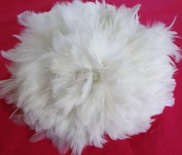 Wholesale Rooster Set - 100pcs set White Goose Feathers Rooster Schlappen Feathers Bulk Supply Craft Design Hair wholesale free shipping