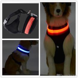 2019 ha condotto il petto del collare del cane C04 Pet dog LED collare per cane leggero e fascia toracica due in un set per cani di taglia media ha condotto il petto del collare del cane economici