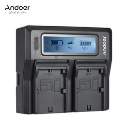 Batterie np online-Andoer Np-f970 caricabatteria per fotocamera digitale a doppio canale con display LCD per Sony NP-F550 / F750 / F950 / NP-FM50 / Fm500h / QM71 J190427