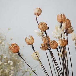 2019 decorazione candela rossa Le decorazioni di fucilazione del fondo floreale del mazzo di frutta secca del fiore secco fiore felice naturale della miscela del mazzo hanno nuovo le decorazioni