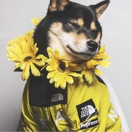 Ropa de bulldogs online-Marea Abrigos para mascotas Huskie Ropa para perros grandes Chaquetas para perros mágicas de invierno a prueba de lluvia Teddy Bulldog Schnauzer Ropa