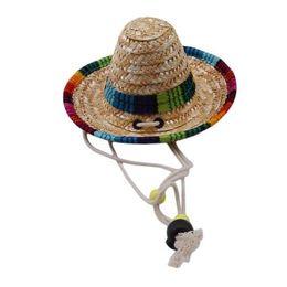 Chapeau mexicain en paille avec boucle réglable pour animal de compagnie Chapeau multicolore pour chat en forme de chat ? partir de fabricateur