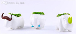 großhandel tier pflanze töpfe Rabatt Großhandel-Tier Desktop Pflanzen Rhinoceros / / Elephant Home Planter Dekoration Schöne Storage Office Potting Bonsai Table Decor