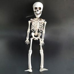 gummi witze Rabatt Halloween Bewegliches Leben Menschlichen Rahmen Skeleton Party Prop Dekoration Simulation Menschlicher schädel anhänger dekor spielzeug 40 * 12 cm
