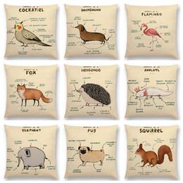 sofá almofadas raposa Desconto Animais engraçados Anatomia Fronhas Fox Flamingo Dachshund Girafa Hedgehog Leão Pug Esquilo Capa de Almofada Sofá Lance Fronha 19 estilos