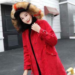 Mujeres s Faux Fur Hooded Black Corduroy Parka Damas Color rojo cálido Anorak Chaquetas Niñas Invierno Verde Delgado Puffer Abrigos desde fabricantes