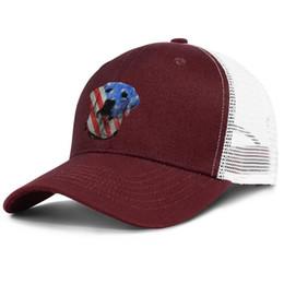 Men and Women Trucker Cap Brazil Flag Sugar Skull Adults Hip-Hop Baseball Caps