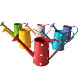 Metal watering can online-Spedizione gratuita metallo favore secchio mini piccolo annaffiatoio Dot design secchio fiore metallo decorativo acqua lattine