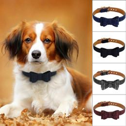 2019 collari di cane nero arancione Collari per cani di moda per gatti adorabili per cani e gatti