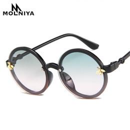 vidros grandes do quadro das meninas Desconto Menina dos desenhos animados MOLNIYA Fashion Boy Sunglasses Rodada clássico Little Bee Big Quadro óculos de sol Crianças Eyewear UV400