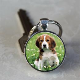 2019 llaveros de cadena Beagle Dog Puppy Photo Glass Dome llavero llavero regalo para amigos, New Style Key Links para 2019 rebajas llaveros de cadena