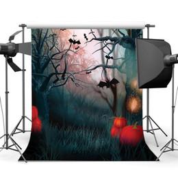 Noche de fotografía de fondo online-Fotografía Telones de fondo Noche de terror de Halloween Bosque misterioso Murciélagos Escena Retratos Retrato de fondo