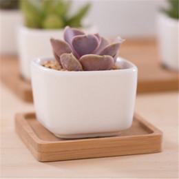 vasetti da giardino in ceramica all'ingrosso Sconti Fioriere succulente in ceramica bianca Fioriere quadrate Vasi per piante verdi Fioriera Cactus Fioriere da tavola Ufficio Decorazioni da tavola 20 Pezzi DHL