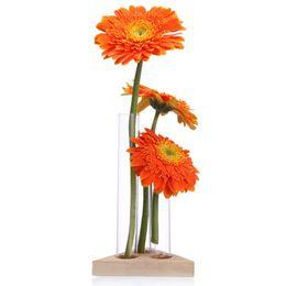 Vaso di fiori Tubi di vetro Vaso di vetro trasparente con supporto in legno per piante idroponiche Tubi di prova Contenitore Home Decorazioni da tavola T da