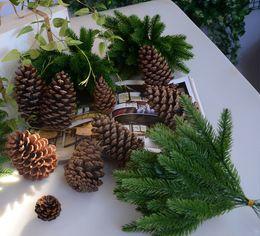 1 pacco fiore artificiale piante finte rami di pino decorazioni per feste di natale albero di natale regalo per bambini C19041701 cheap pine tree plants da piante di pino fornitori