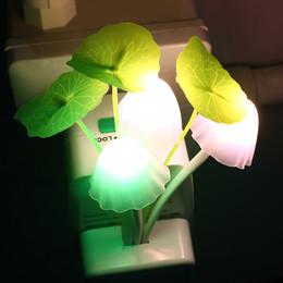 2019 funghi Novità US EU Plug Night Light Induzione Dream Fungus Fungus LED Lampada 3 LEDs Mushroom Lamp led night lights Luminaria funghi economici