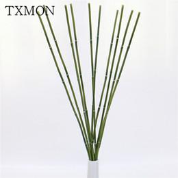 Semences pour Décorative Chambre Bambou fer BAMBOU GRAINES