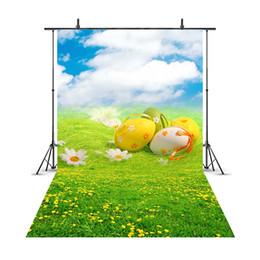 Deutschland Osterei-Frühlings-Blumen-Wiesen-Baby-neugeborene Fotografie-Hintergrund-blauer Himmel-Grün-Landschafts-Hintergründe für Foto-Studio 207 cheap flowers sky Versorgung