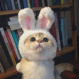 Komik Sevimli Pet Kostüm Cosplay Tavşan kulakları Cap Şapka için Kedi Cadılar Bayramı Noel Giysileri Fantezi Elbise Kulakla ... cheap pet rabbit clothes nereden evcil tavşan kıyafetleri tedarikçiler