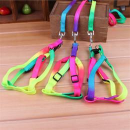 Collari di cani arcobaleno online-Colorful Rainbow Pet Dog Collar Harness Guinzaglio morbido da passeggio Harness Lead Colorato e resistente Traction Rope nylon 115cm in stock