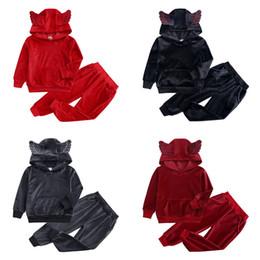 Longo, hoodies, asas on-line-Conjuntos de Roupas de bebê Crianças Inverno Espessamento Manga Longa Asa Hoodies Calças de Duas Peças Define Crianças Roupas De Grife Roupas de Bebê Meninas 12M-8T 07